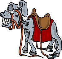 Idiom Definition - donkey's years
