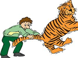 Idiom Definition - tiger by the tail