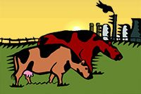 Idiom Definition - until the cows come home