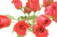 Idiom Definition - come up roses